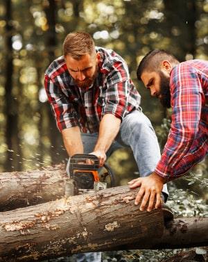для специалистов, которые работают с лесом